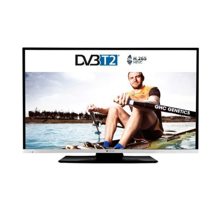 Televize GoGEN TVF 43N384 STWEB LED